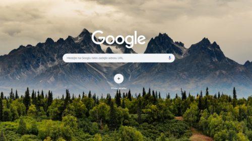Co jsme v ČR letos vyhledávali na Googlu?